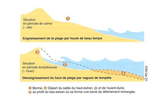 Variation saisonnière du profil de plage (Paskoff, 1998)