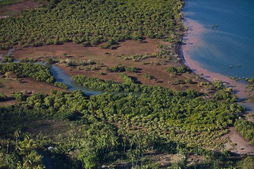 Mangrove de Mayotte ©DEAL976